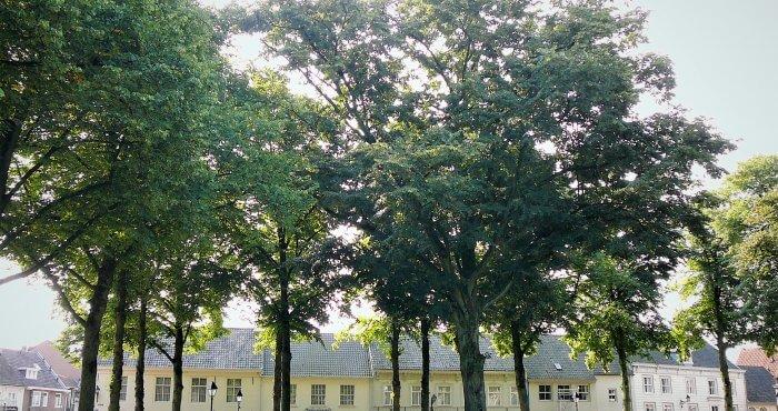 Bedrijfsrecherche Hilvarenbeek foto