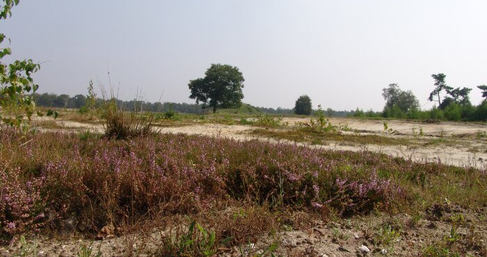 prive detective Noord-Brabant foto
